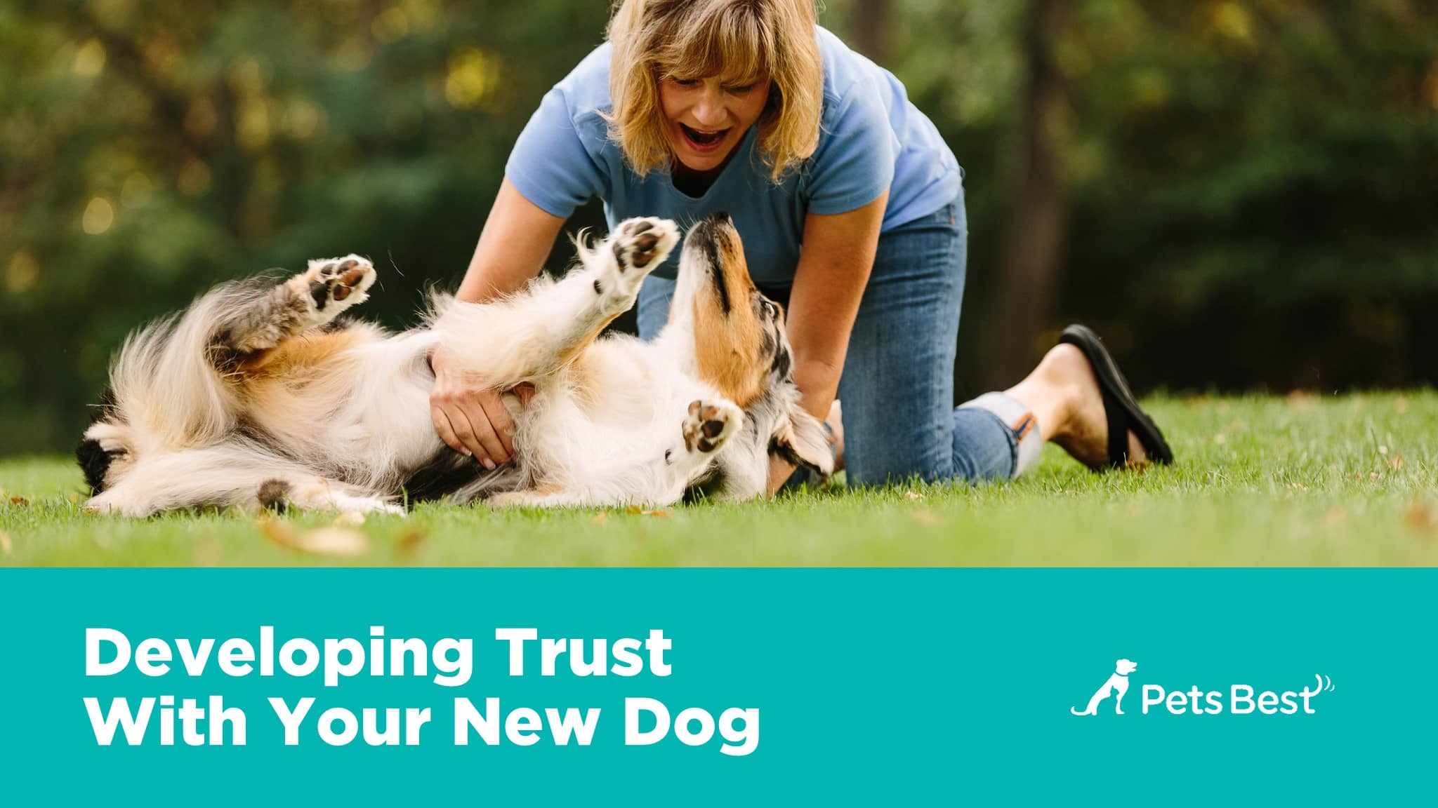 An Owners Guide to Great Pet Health An Owners Guide to Great Pet Health new pictures