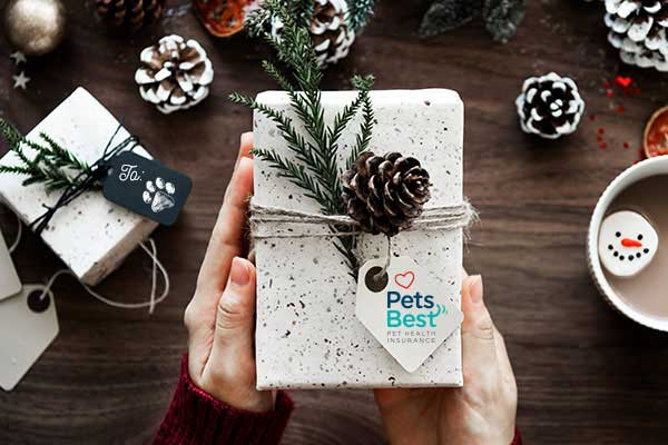 Pets Best Holiday Pet Gift Guide 2017.