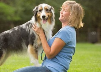 3 Tips for Introducing Yourself to a New Dog from Pets Best pet health insurance.