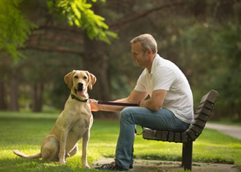 Learn about choosing pet insurance that fits your pet and your lifestyle