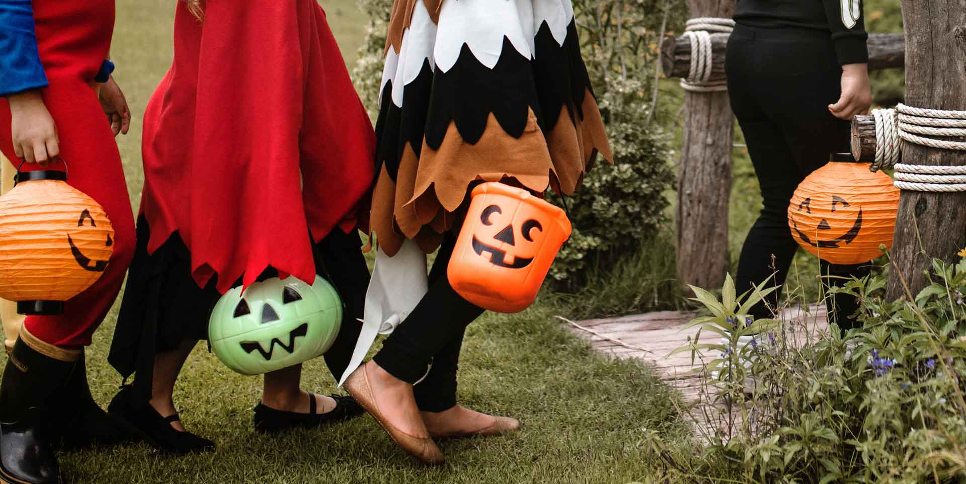 Check out these tips for avoiding a case of the frights when you take your dog trick-or-treating this Halloween
