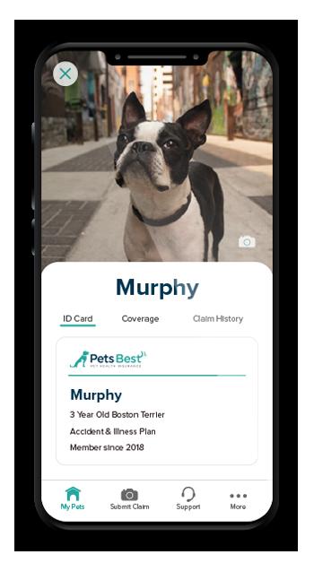 Pets Best Mobile App